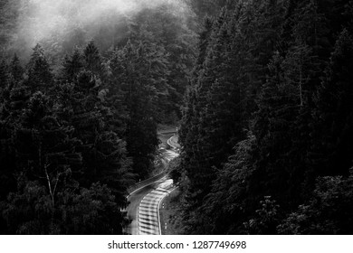 Lonely road leads through a dense Foggy forest, view from above