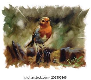 Lonely Robin Bird Torn Edges