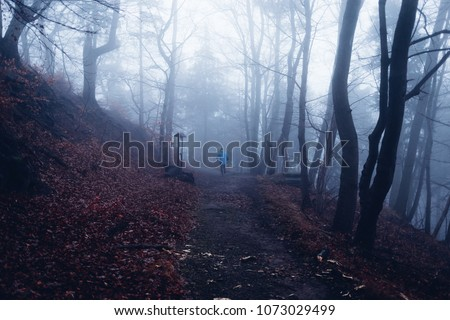 A lonely runner running through the misty forest