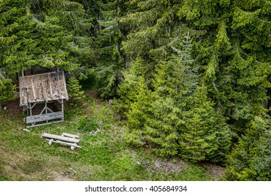 A lonely shed in the woods