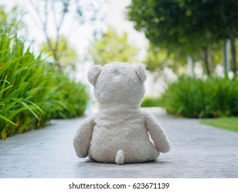 Lonely Teddy Bear Sitting on the walk way or road (Concept about love)