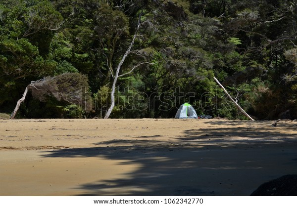 Lonely tent in the middle of abandoned beach with jungle in background