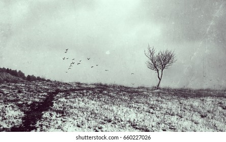 Lonely tree in aged textured art background. Depression and melancholy mood. Abstract loneliness and sadness. Flying birds on horizon