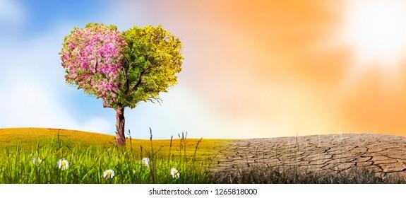 lonely tree environmental help