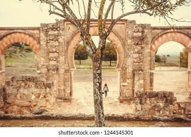 Lonely tree on landscape of historical ruined Moorish medieval city Medina Azahara in Andalucia region, Spain. UNESCO world heritage site.