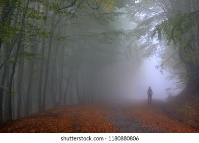 """Lonely woman walking somewhere in Pangeo (or """"Pangaeo""""), the mythical mountain, Kavala prefecture, Macedonia, Greece."""