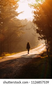 Lonely Woman Walking to the Sunset at Forest