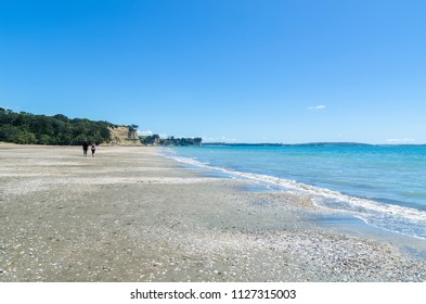 Long Bay Regional Park in Auckland,New Zealand.People can seen exploring and relaxing around it.