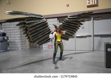 Long Beach, CA - Feb 17: Hawkgirl shows their costume at the Long Beach Comic Expo on Feb 17, 2018 in Long Beach. As other cons focus on film, the Expo emphasises comics.