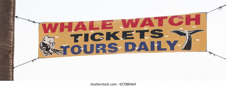 Long Beach CA, USA, February 20 2016 Whale watching tickets tours daily vinyl banner sign hanging up in the air attached with cables on a white background.