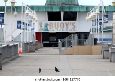 Long Beach, California March 25, 2020. Pigeons stand on the Belmont Veterans Memorial Pier in Long Beach, Calif., one of many public places closed to visitors because of COVID-19.
