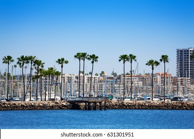 Long Beach cityscape with palms and yacht's pylons