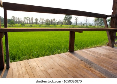 The long bench at the edge of the wood floor.