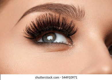 Long Black Eyelashes. Closeup Of Beautiful Female Eyebrow And Big Eye With Fake Lashes. Woman With Soft Smooth Healthy Skin And Glamorous Professional Facial Makeup. Beauty Cosmetics. High Resolution
