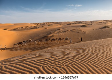 Long camel caravan and amazing sand dune in ther desert