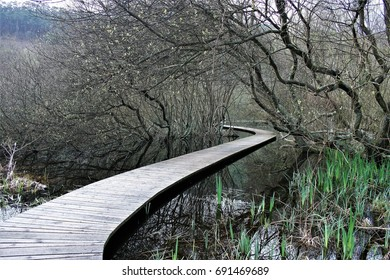 the long and curved path, allegory of the difficulties in achieving a goal,Wooden path on the lake water, visual allegories, visual metaphors, photographic allegories, photographic metaphors,