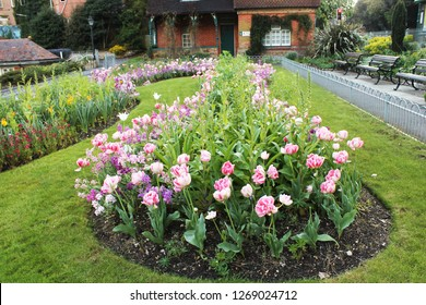 Long Curved Pink and Green Flower Bed in Park. Pink Tulips Framing Green Center
