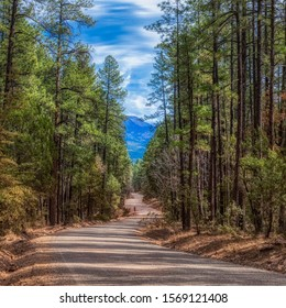 A long dirt road below the Mogollon Rim in Arizona.