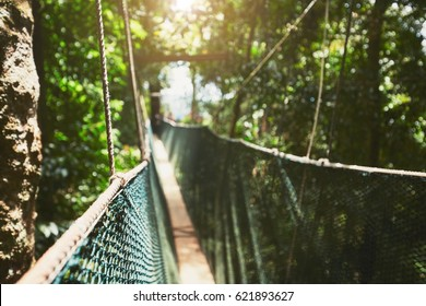 Long elevated walkway through the treetops in rainforest (Borneo, Malaysia) - selective focus