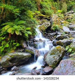 Long Exposure image of a Waterfall in Lush Temperate Rainforest on the West Coast of New Zealand