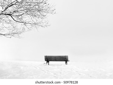 long exposure night winter image of park bench and tree