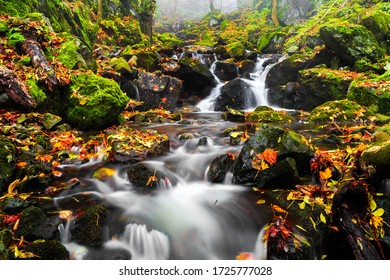 Long exposure river flowing over rocks in autumn with colorful leaves and bright green moss in a close up view on the water showing the beauty of nature