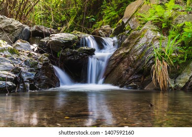 Long exposure of river flowing through a mountain forest over rocks and creating a small scenic waterfall. Scenery in Cinque Terre, National Park, Italy.