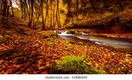 Long exposure shot of the forest strem in the beautiful wood on Zumberak hills near Samobor -Croatia