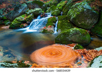 Long exposure shot of moving leaves and water
