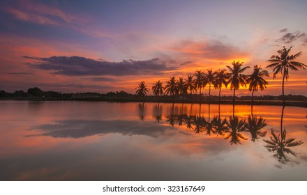 Long Exposure Shot Palm Tree Scenery with Full Reflection at Sunrise