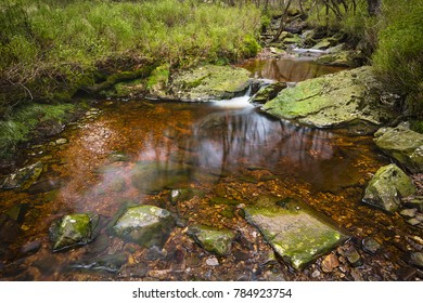 Long exposure shot of a small waterfall and lake of the mountain creek Tro Maret in the Ardennes, Belgium. The water is brown due to the high amount of peat in the area.