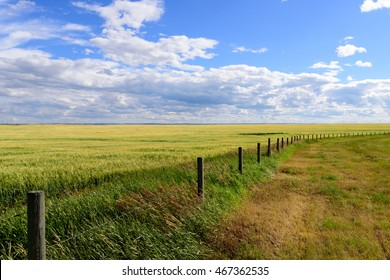 Long fence in a prairie landscape