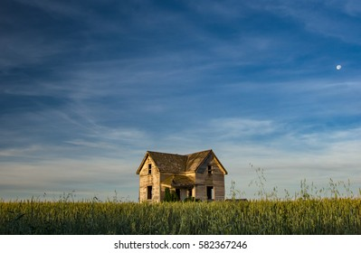 A long forgotten farm house surrounded by a wheat field