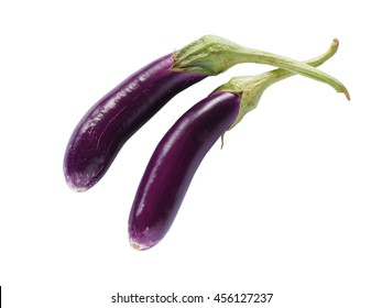 Long fresh organic raw purple eggplant or purple brinjal or aubergine isolated on white background. Clipping path included.