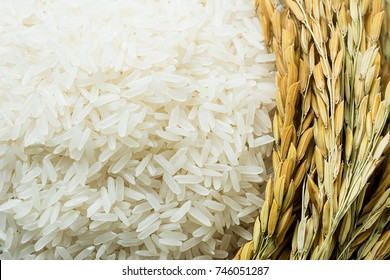 Long grain of rice and rice