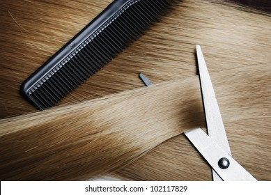 Long healthy blond hair and professional scissors