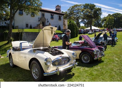 LONG ISLAND, NY - SEPTEMBER 14, 2014: Classic Austin Healey cars on display at auto show on the grounds of the Vanderbilt Mansion.