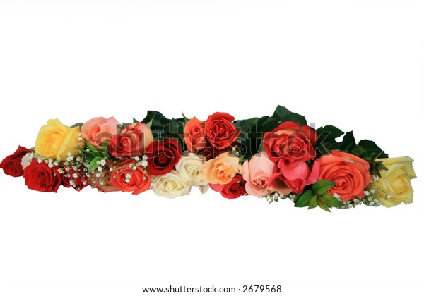 Long line of multi colored roses isolated