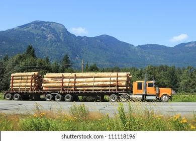 Long logging truck