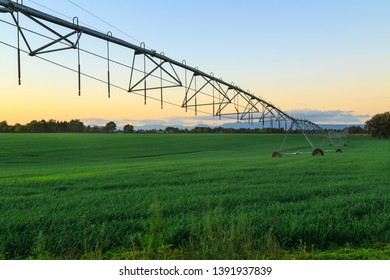 Long Metal Irrigation System Stretching Across Beautifully Lush Green Pasture. Photographed at Sunset in the Waikato Area, New Zealand