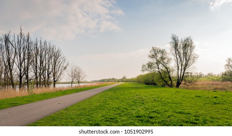 Long narrow road diagonally through the image of the Dutch nature reserve Biesbosch. It is springtime now and some trees are budding already.