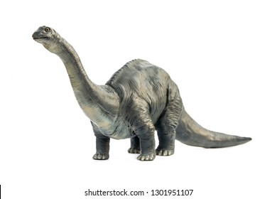 Long necked dinosaur eating plants Brontosaurus in form classic style on white background.