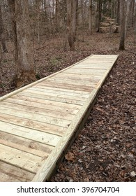A long newly built wooden bridge leading across a stream and swamp marsh through the woods on a winter day