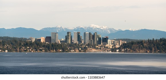 A long panoramic shot af the urban jungle that is Bellevue Washington