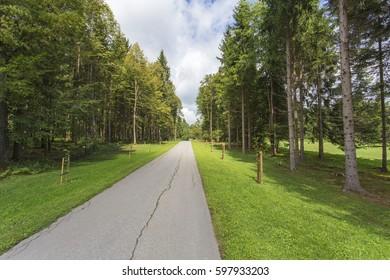 Long Road, Brdo pri Kranju - Slovenia - Shutterstock ID 597933203