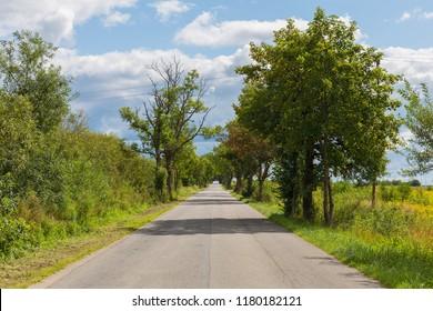 Long road runs far away. Bright cloudy summer day