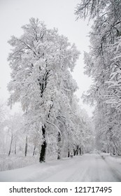 long road in the snow