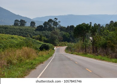The long road way to countryside, travle and holiday concept.
