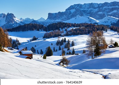 long shadows at morning in winter on Alpe di Siusi, Dolomites, Italy