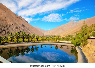 Long shot of a pond with the reflection of palm trees and the blue sky in the water and hills in the background in the Elqui Valley in Chile, South America